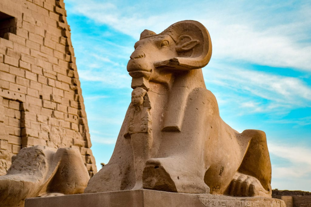 statue of a Ram sphinx  - Karnak Complex - Luxor - Egypt